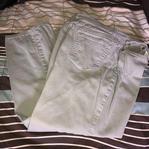 Style & Co Size 16 Short